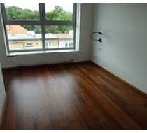 Strojní čištění podlah 6